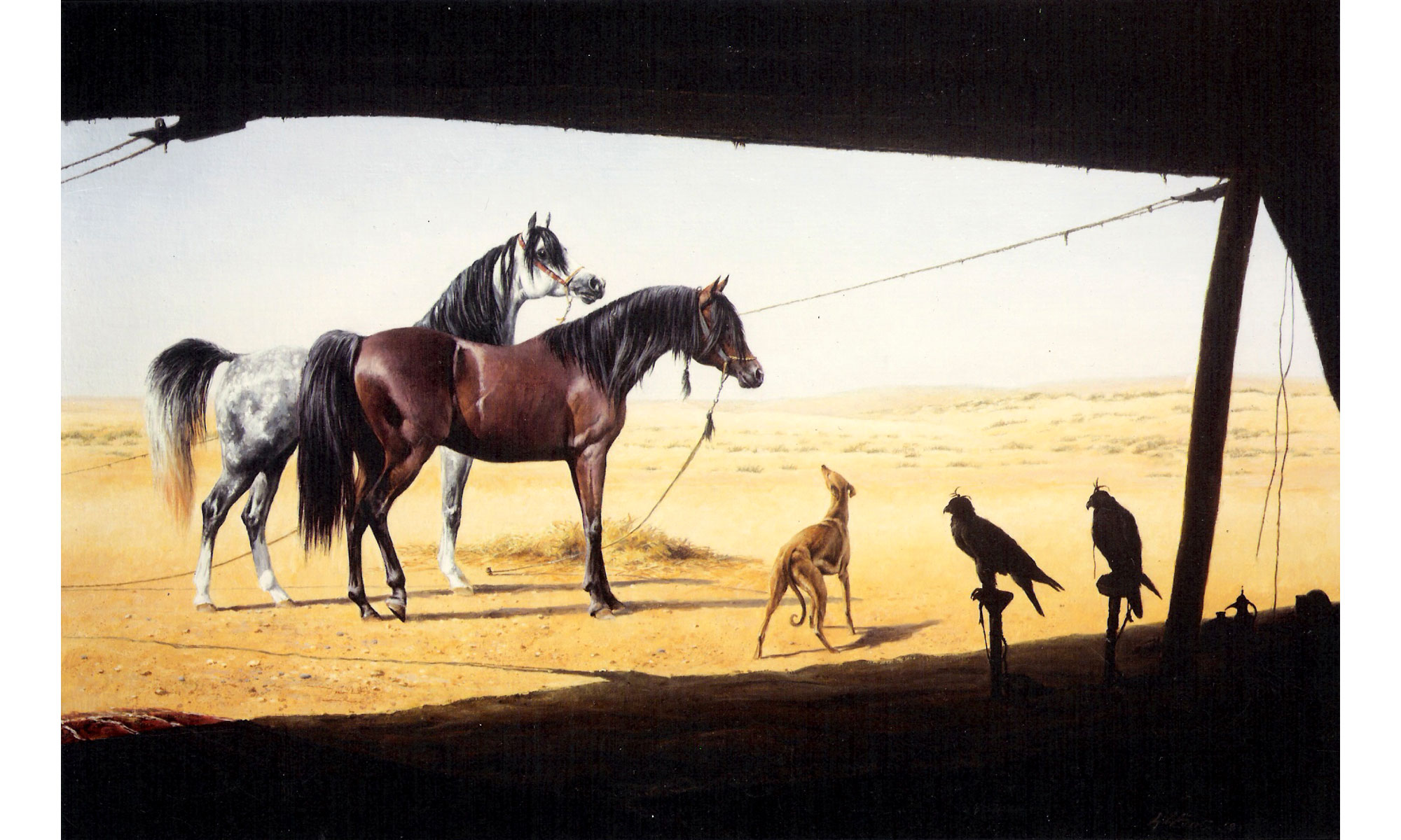The Beloved Arab Horse Painting by Terence J Gilbert Oil on Board