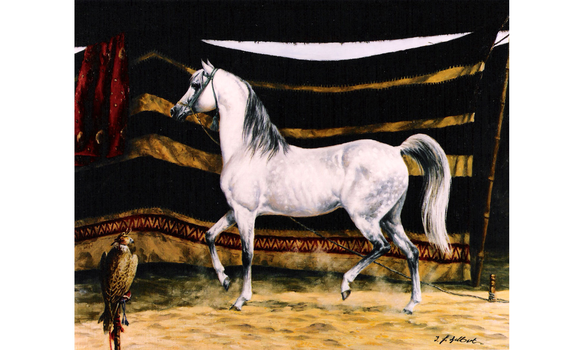The Favourite Arab Horse Painting by Terence J Gilbert Oil on Board
